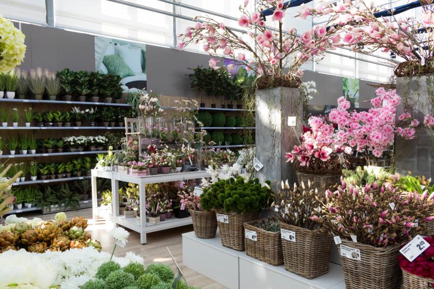 Gartencenter Kremer. Die Naturtalente
